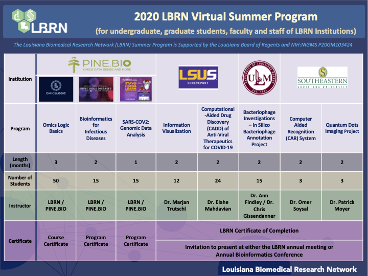 LBRN 2020 Virtual Summer Research Program